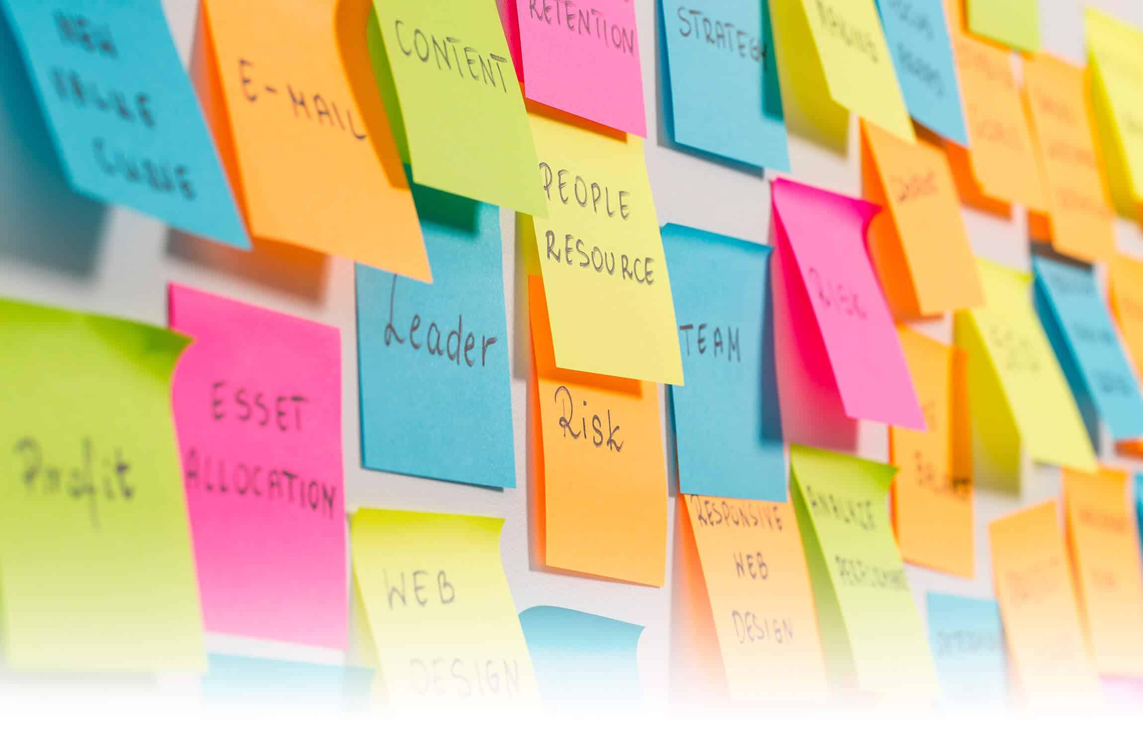 Marketing Management/Planning